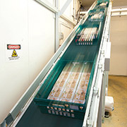 Inclined belt conveyor at Tamar Foods
