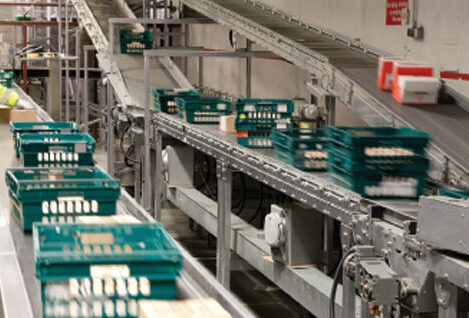 Crates moving on roller and belt conveyors at Tamar Foods